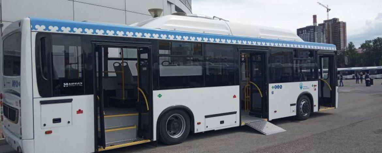 avtobus-nizkopol